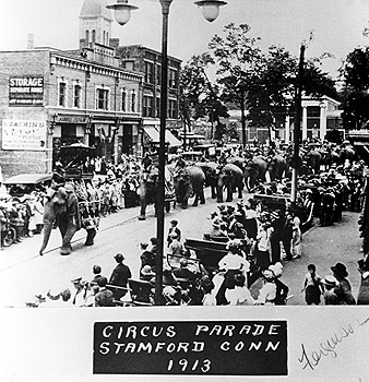 elephants leading the parade, Ferguson Library in background
