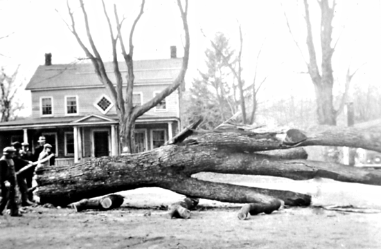 Across the street, a tree came down. Elbert Jones fourth from the left